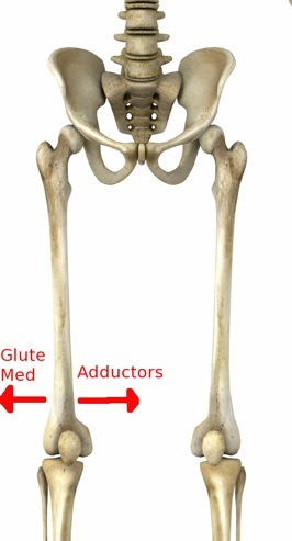 Frog Stretch for Tight Adductor Muscles