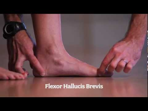 Running Foot Health: Self Assessment
