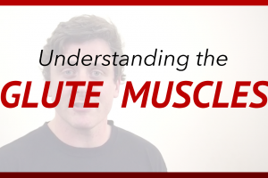 Understanding the Glute Muscles