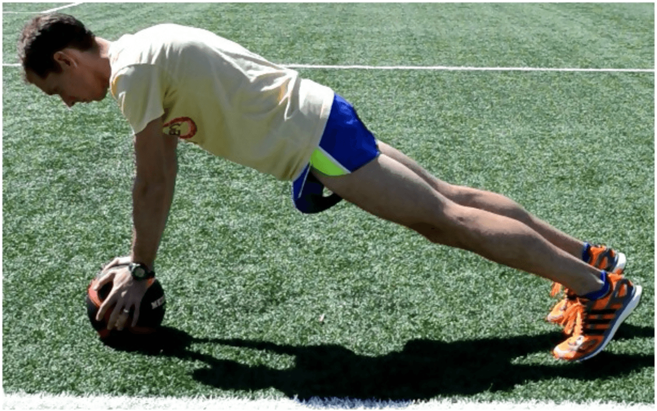 Plank Exercise Demonstration